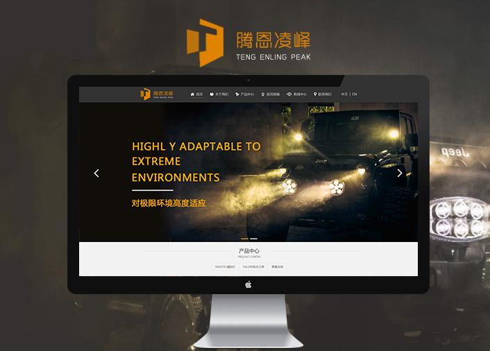 腾恩科技有限公司广州网站建设飓风网络