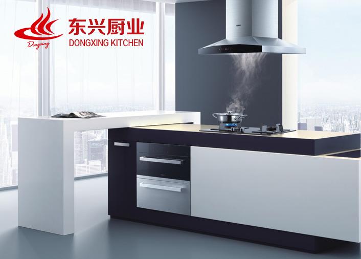 东兴厨业有限公司